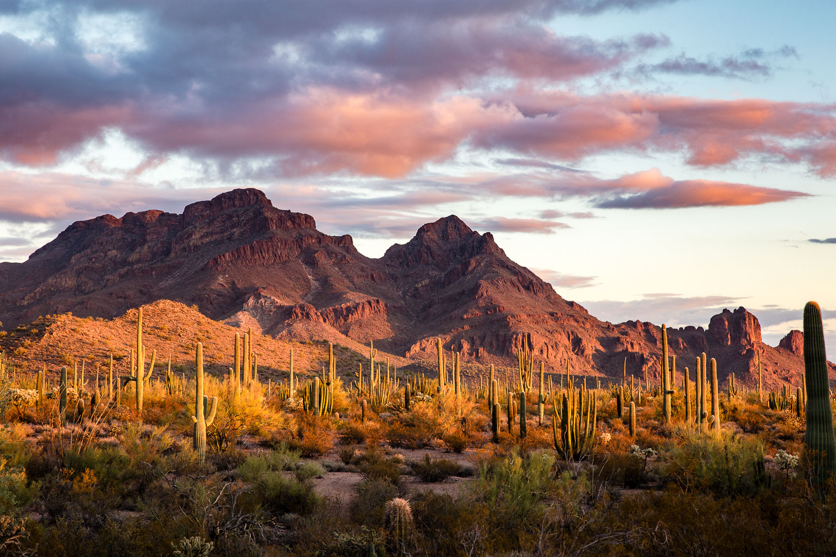 Sunset on Ajo Mountain